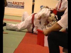 Открытый чемпионат Литвы по кудо-2008